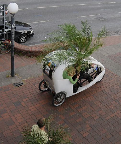 hamburger fotografien palmentransport mit fahrradrikscha. Black Bedroom Furniture Sets. Home Design Ideas
