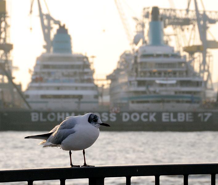 Hamburg Fotografie Fotos Vom Hamburger Hafen Fotos Vom Hamburger